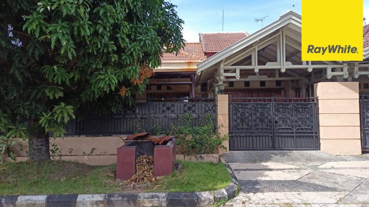 Rumah Disewakan di Sutorejo Prima Surabaya
